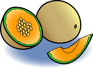 11 melon clip art free cliparts that you can download to you computer ...