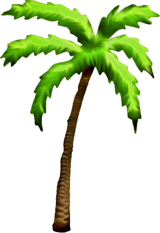 Png palm tree clipart