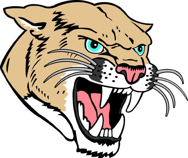 Cougar Face Line Drawing : Cartoon cougar images clipart best