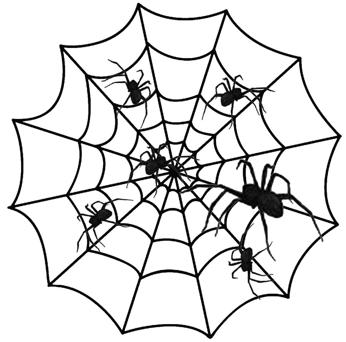 Halloween Spiders Pictures Clipart Best