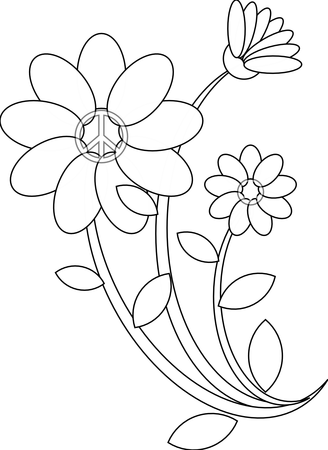 Black Line Flower Drawing : Flowers line drawing images clipart best