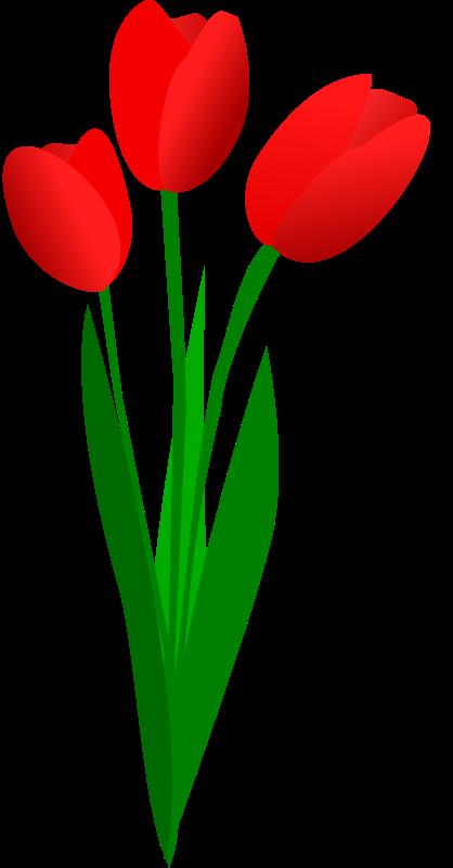 Spring Tulips Clip Art - ClipArt Best
