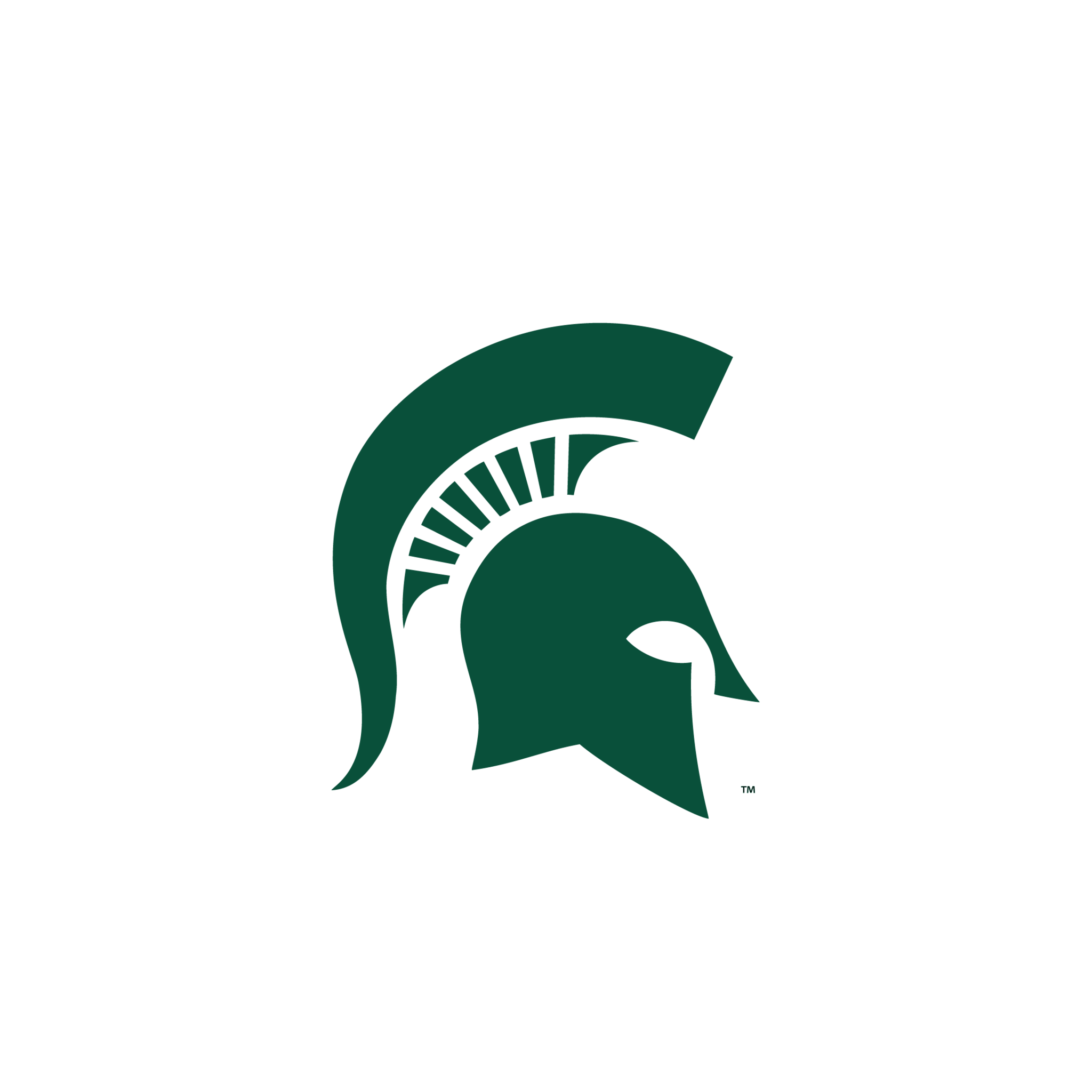 1000+ images about Michigan state | Logos, Models and ...