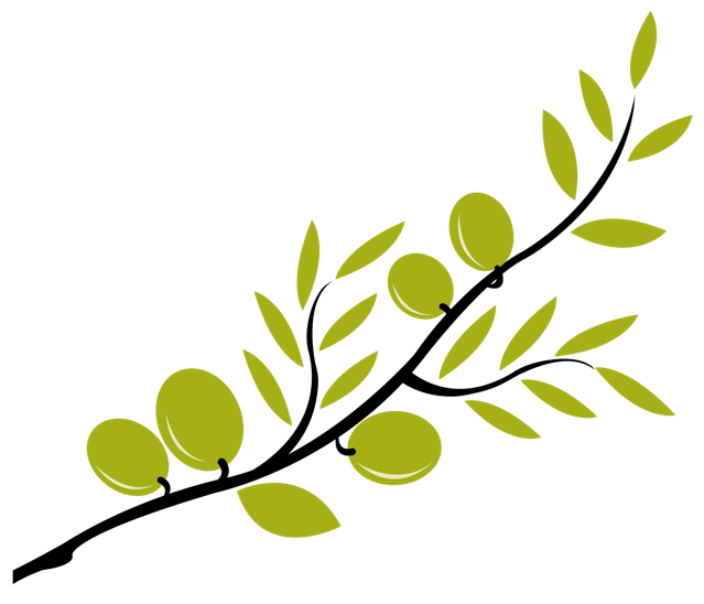 Olive Branch - City - ClipArt Best - ClipArt Best