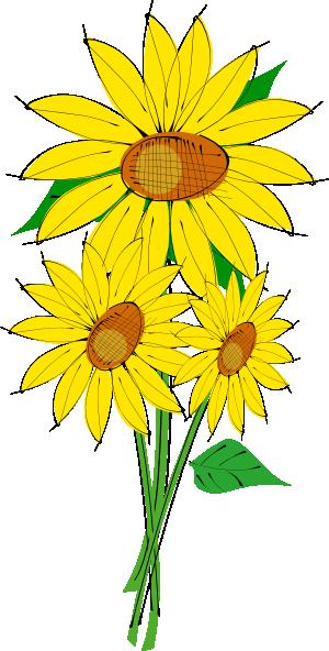 Sunflower Border Clip Art  Sunflowers Clip Art Images