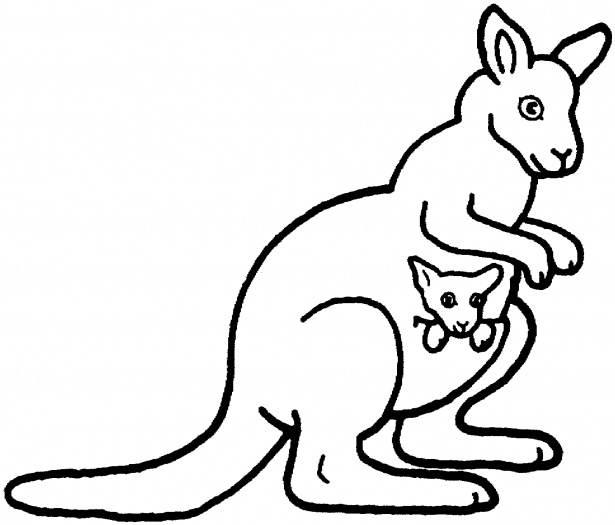 Free Coloring Pages Of Kangaroo Outline
