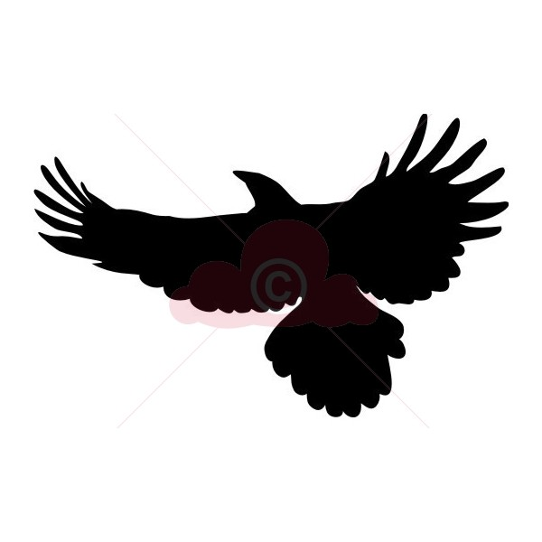 Soaring Eagle | Card Making and Crafts Supplies | Crimson ...