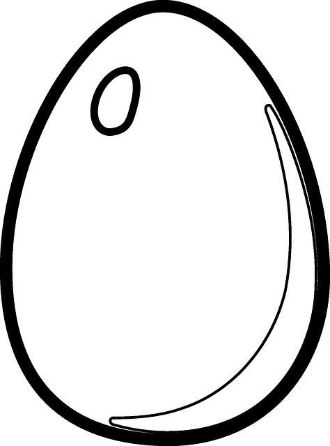 Egg Outline Clipart Best