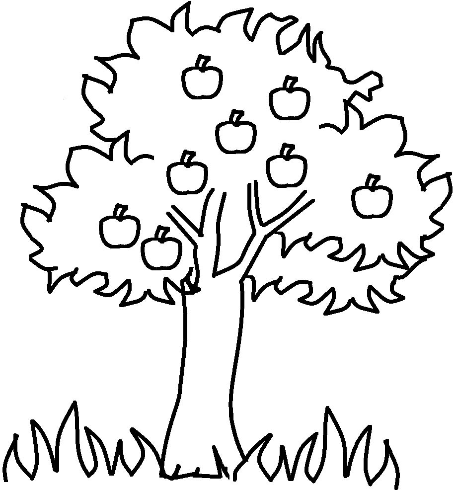 The Thick Apple Tree Coloring For Kids Tree Coloring Tree Coloring Page For Toddlers
