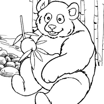 giant panda coloring page - giant panda coloring page bear coloring pages ikids