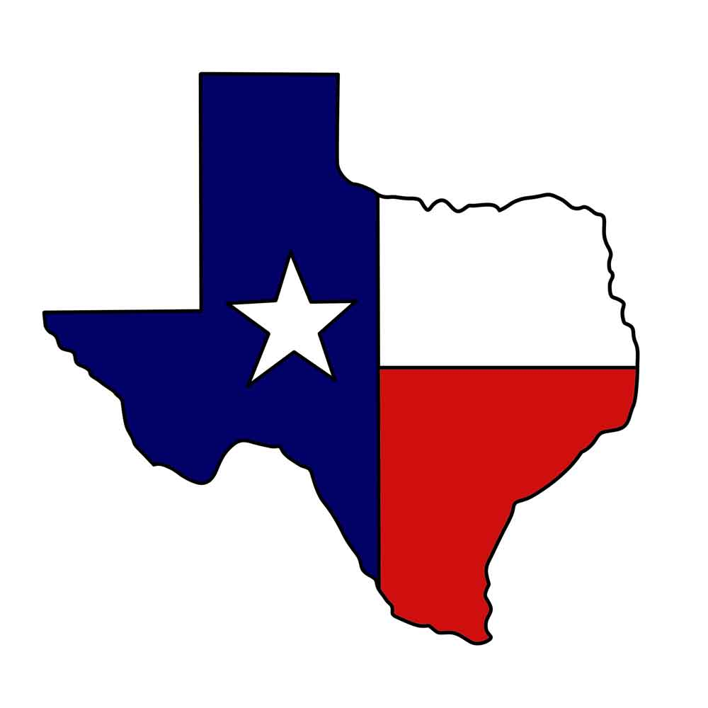 Image result for state of texas
