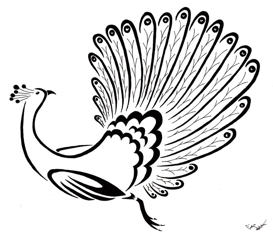 Line Drawing Peacock : Line drawing peacock images clipart best