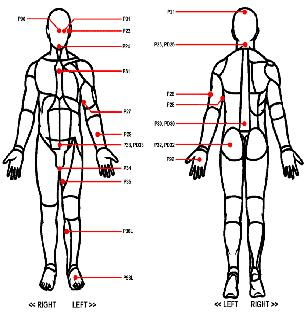 Human Body Outline Printable - ClipArt Best
