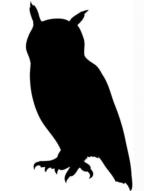 Owl Silhouette | Drawing Owls, Tree ...