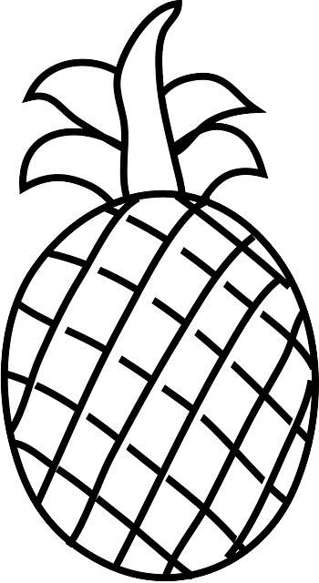 Line Drawing Photo : Line drawings of fruit clipart best