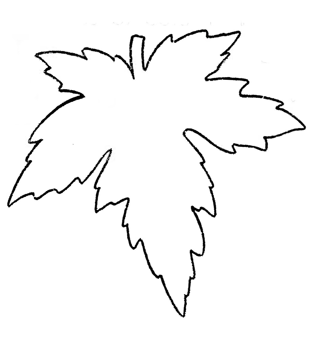 Leaf Outline Template - ClipArt Best