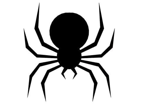 Spider outline