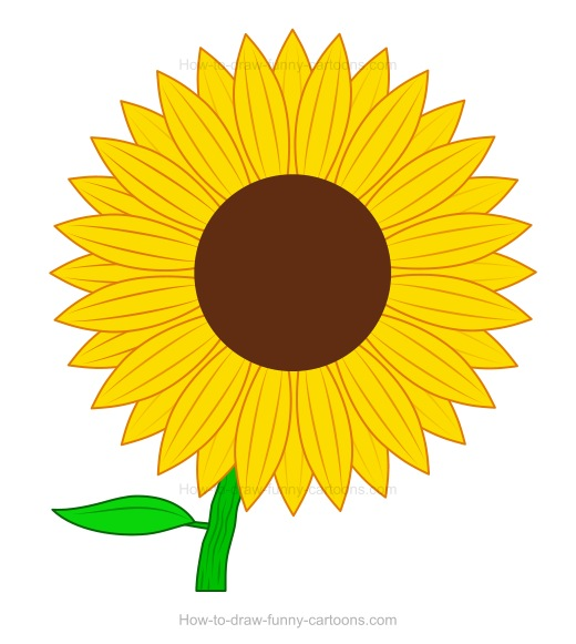 cartoon sunflower clipart best