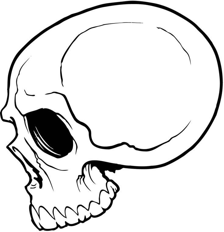 Line Art Skull : Skull line drawings clipart best