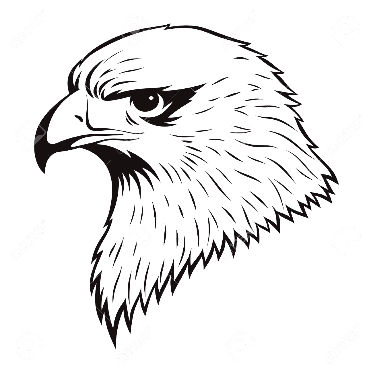 Eagle Drawings - ClipArt Best
