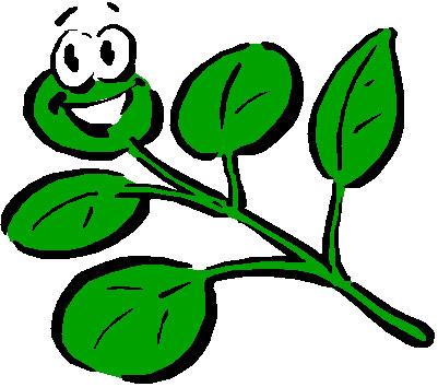 cartoon plants natural photography   clipart best   clipart best