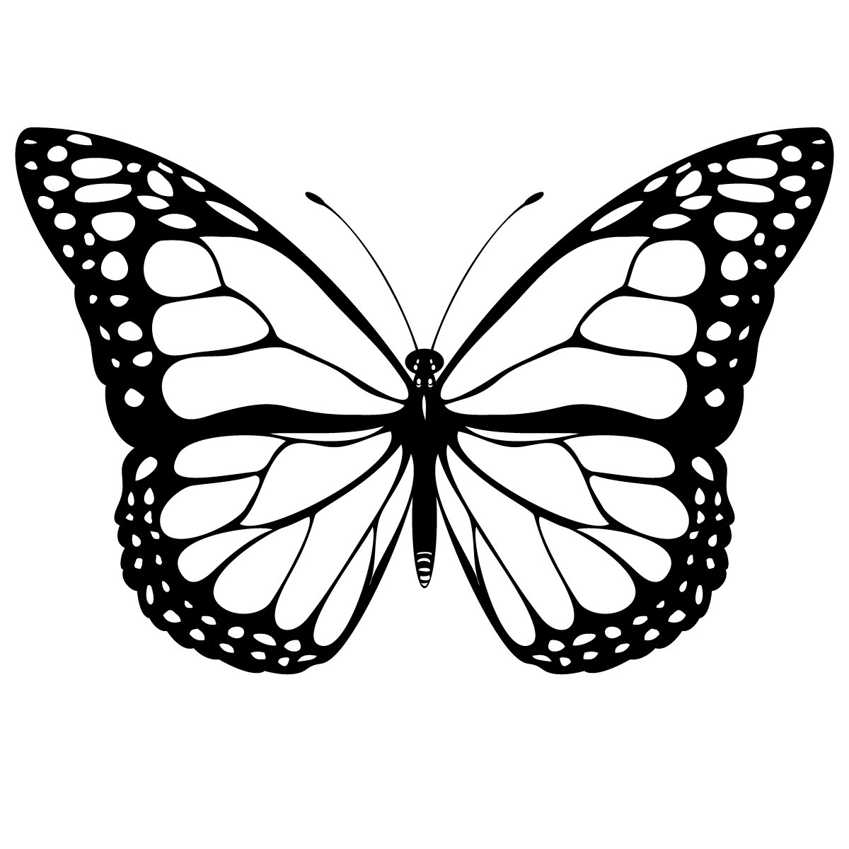 Cool Butterfly Drawings - ClipArt Best