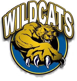 Wildcat Football Mascot Holding Ball School Stock Vector (Royalty Free)  1451494508