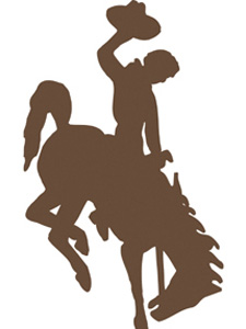Pictures Of Horses Bucking - ClipArt Best