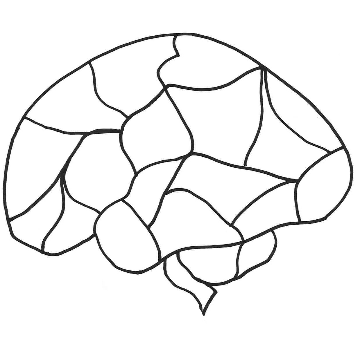 Brain Blank Diagram - ClipArt Best