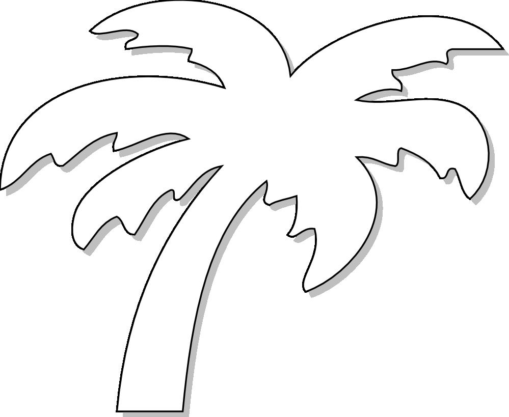 Line Drawing Palm Tree : Palm tree line drawing clipart best