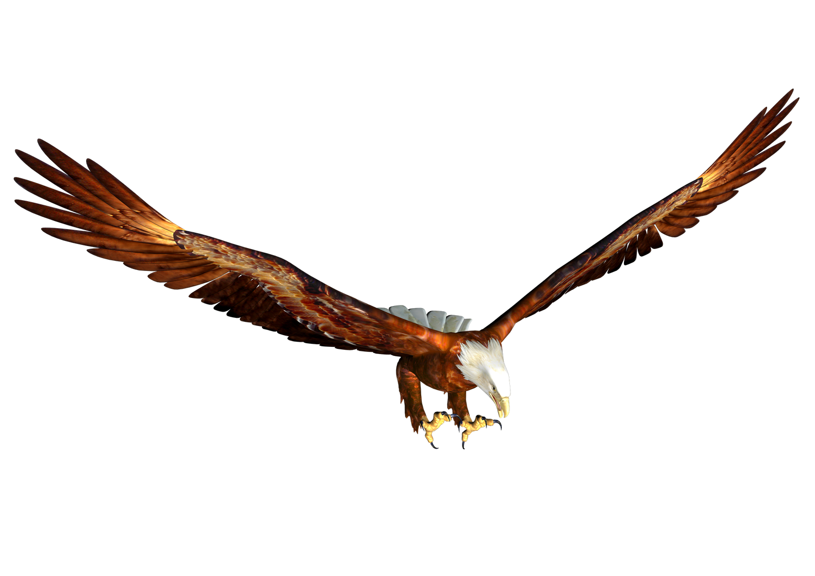 Free High Resolution graphics and clip art: misc png eagle ...