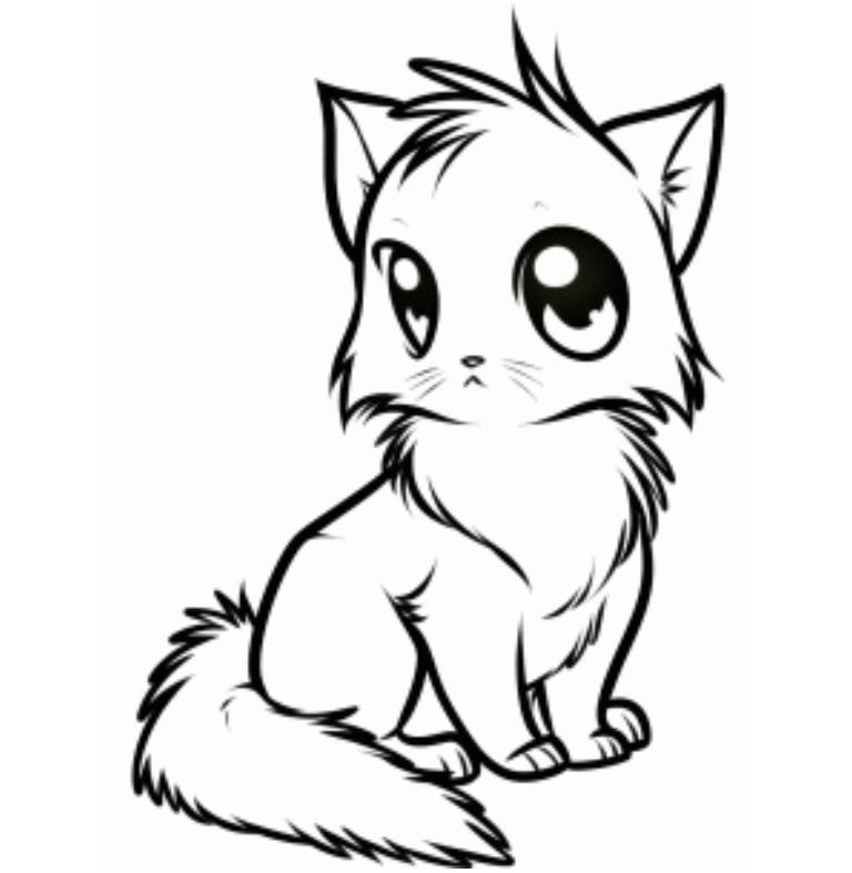 Line Art Of Cat : Cat line clipart best