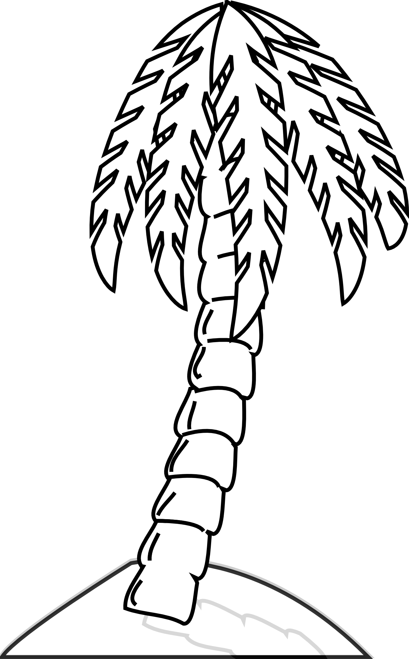 palm tree line drawing clipart best