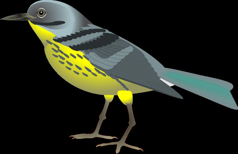 Bird Clip Art Free - ClipArt Best