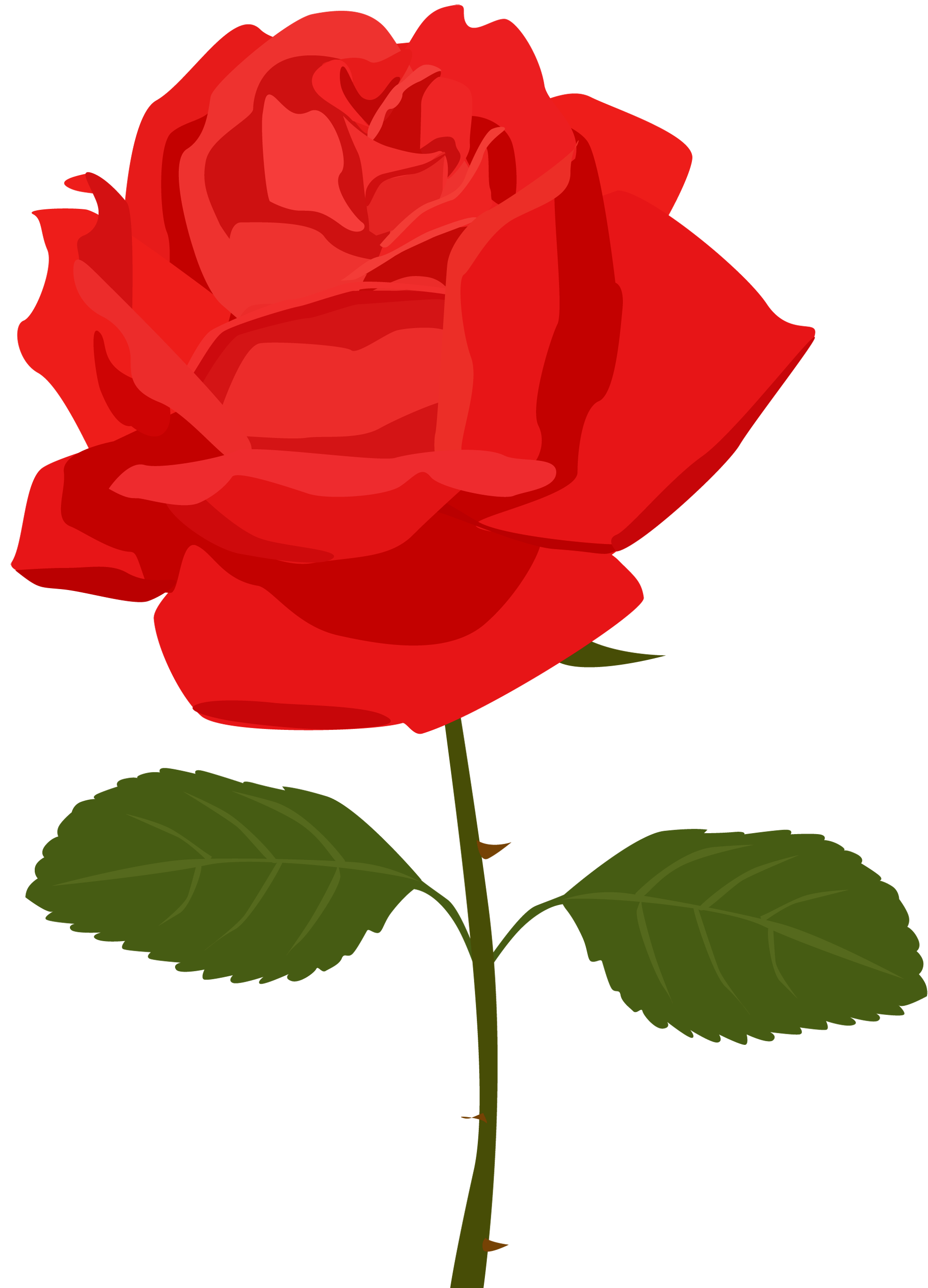 red roses clipart - photo #19