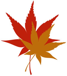 Cartoon Fall Leaves - ClipArt Best