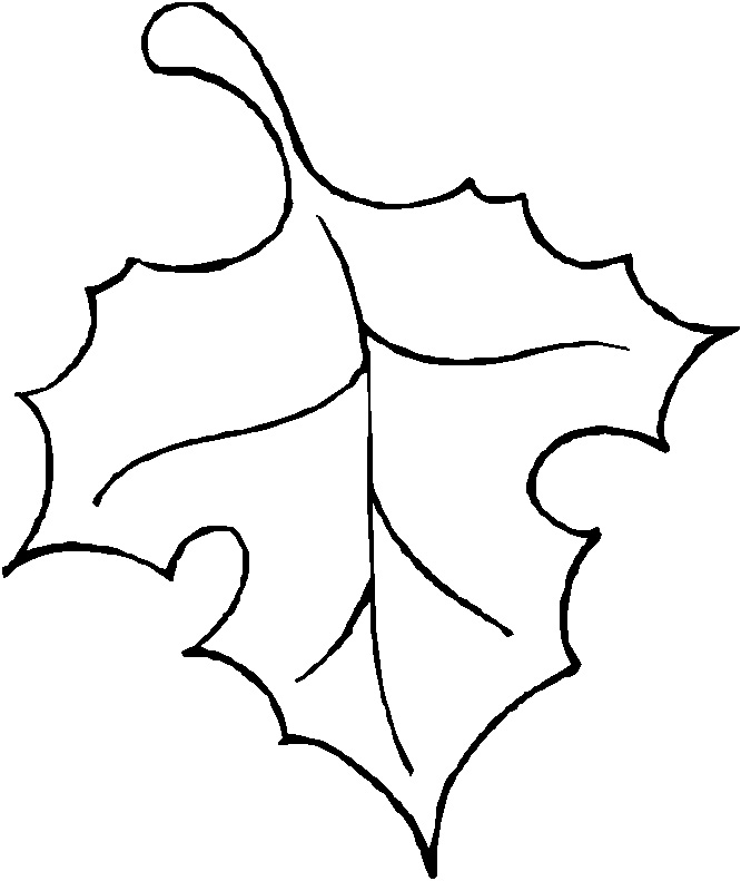 Fall Leaves Outline Clip Art Drawing :: clip art :: outline