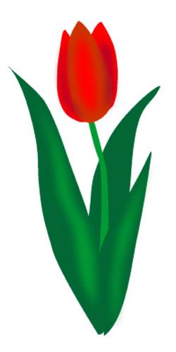 Tulip Clip Art - ClipArt Best