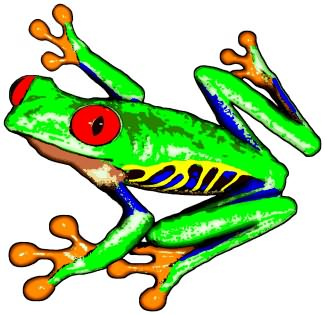 pictures of tree frog tattoos clipart best. Black Bedroom Furniture Sets. Home Design Ideas