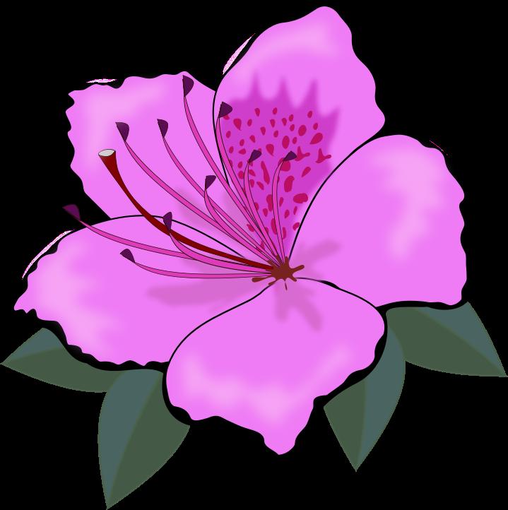 Cartoon Purple Flower Clipart - ClipArt Best