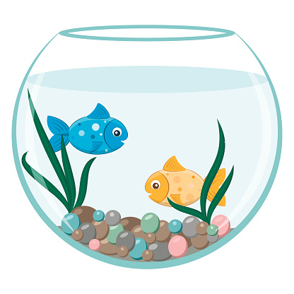 Fishbowl Clip Art, Vector Images & Illustrations