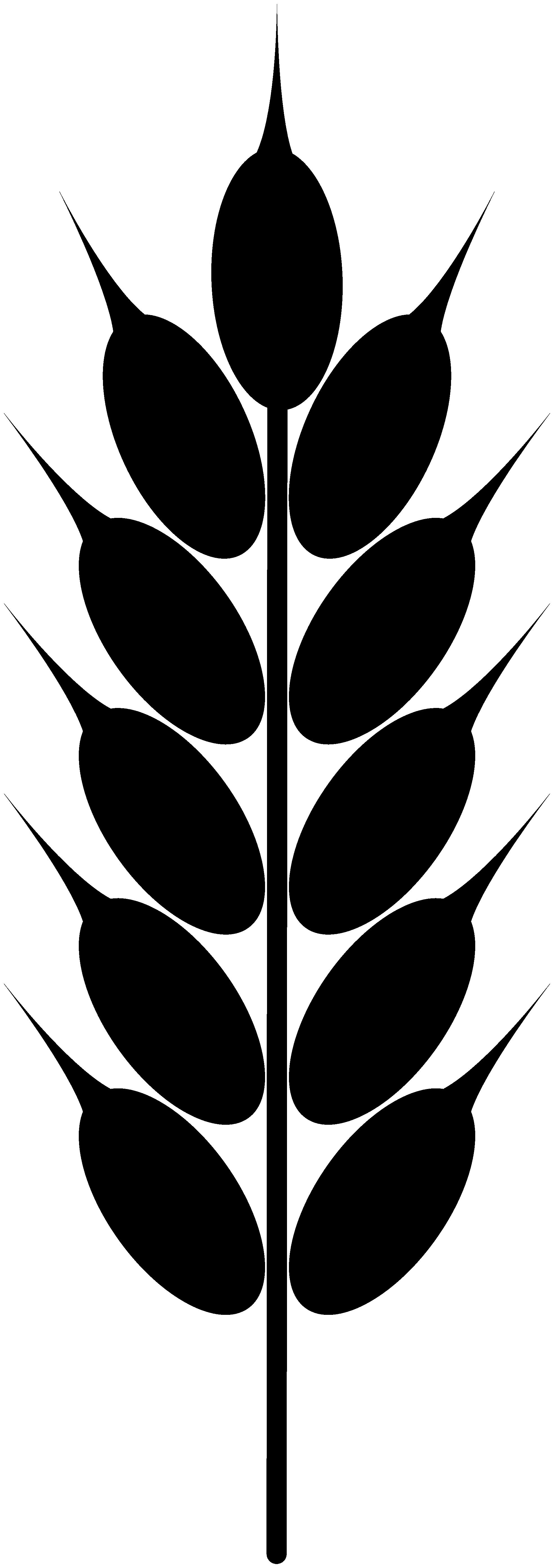 Wheat Logo - ClipArt B...