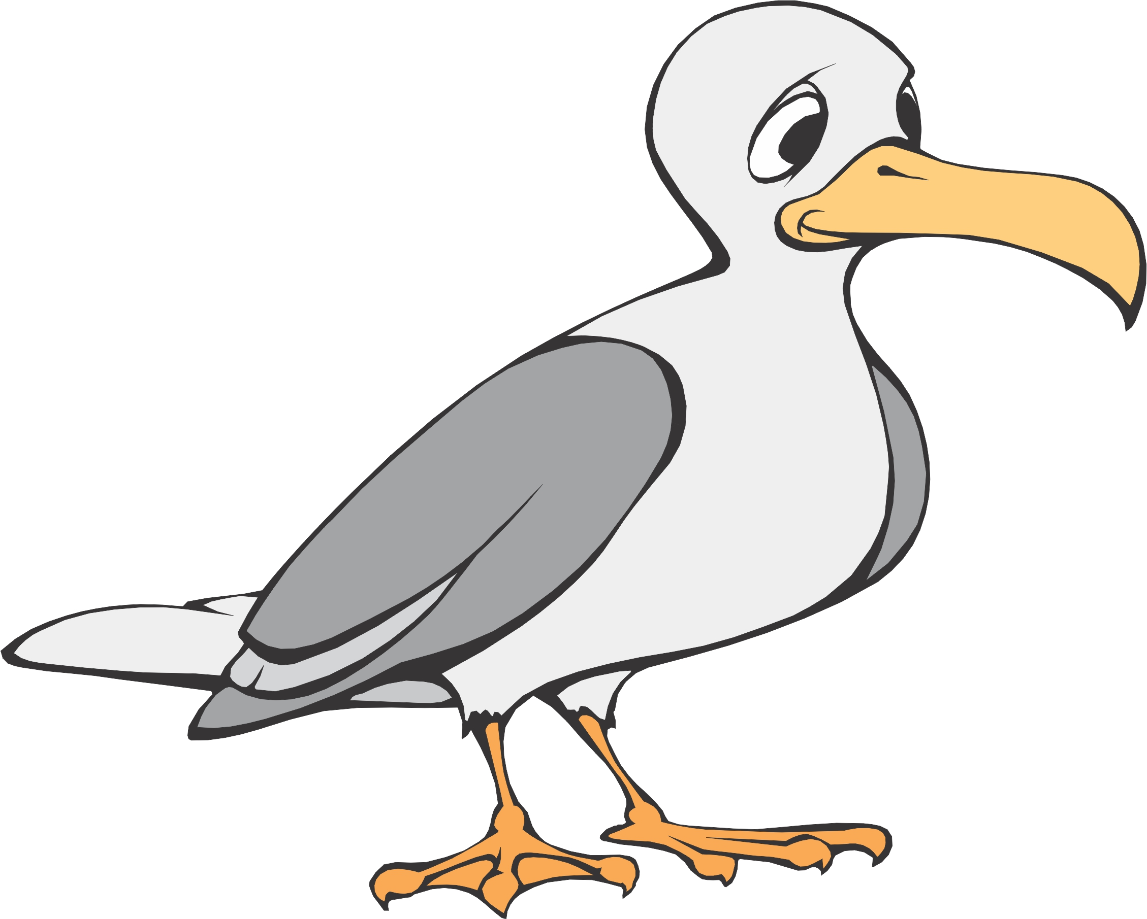 16 seagull cartoons . Free cliparts that you can download to you ...