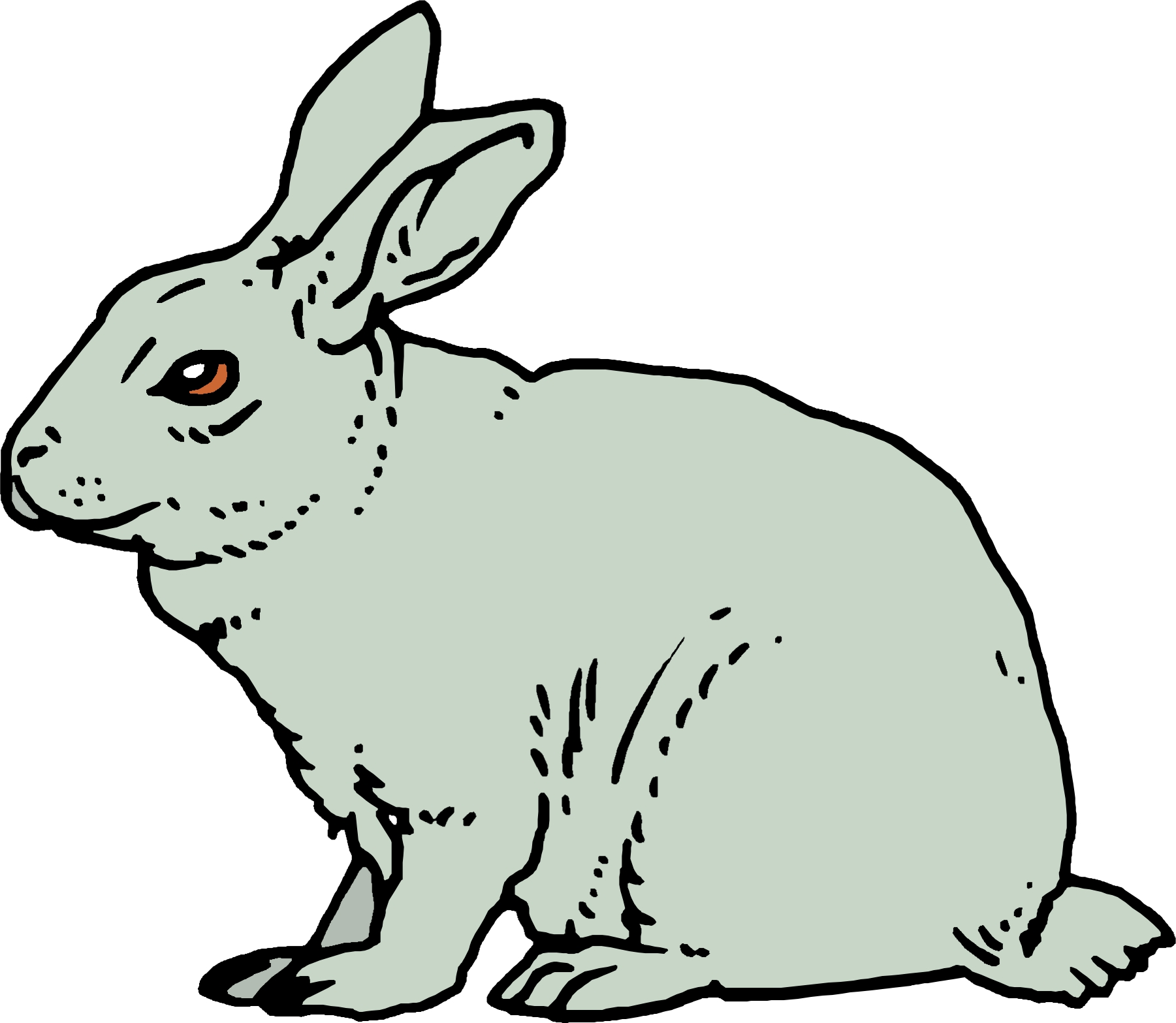 cartoon rabbit pics . Free cliparts that you can download to you ...