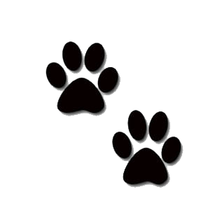 Panther Paws - ClipArt Best