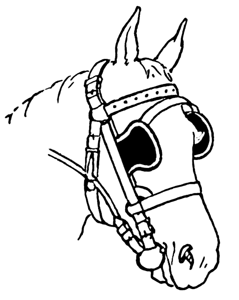 Horse Head Coloring Pages - ClipArt Best