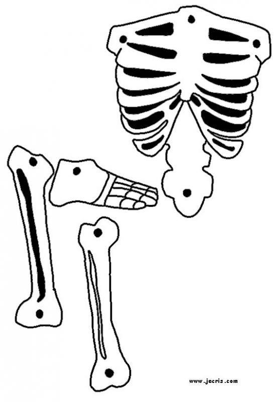 Gorgeous image intended for skeleton stencil printable