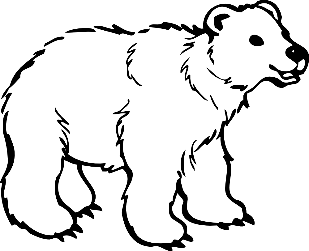 Bear coloring pages clipart best for Coloring pages polar bear