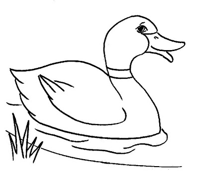 math worksheet : clip art  line drawing  kindergarten worksheet guide  : Kindergarten Drawing Worksheets