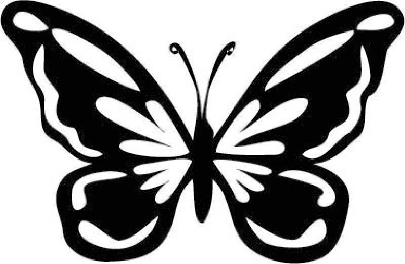 Butterfly Cake Template Free